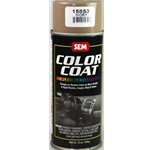 Color Coat-Ivory